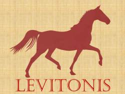 Levitonis