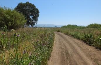 Дорога к озеру Кинерет. Израиль.