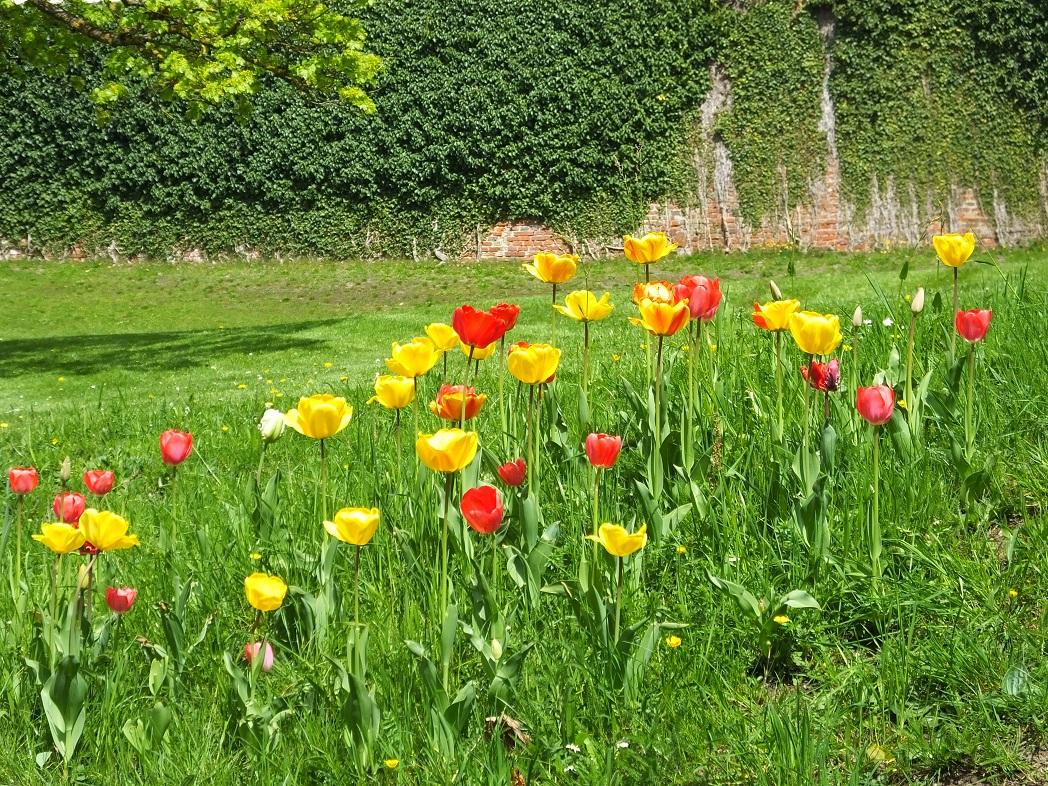 Весна. Бавария.